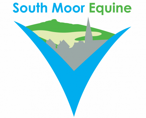 Southmoor Equine