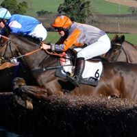 Point to Point Vets