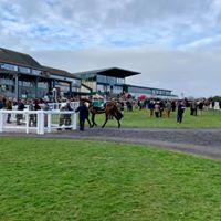 Race Horse Vets Devon